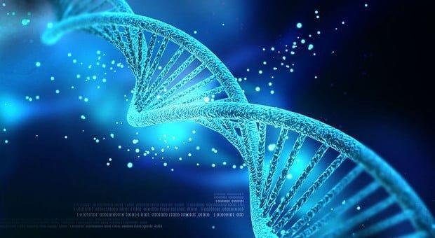 Sintetizzato in USA, un super DNA in grado di riconoscere forme di vita aliena