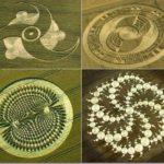 Il mistero dei cerchi nel grano ( CROP CIRCLES )