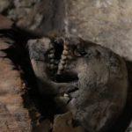 in foto una delle mummie ritrovate, Credit: Ministero delle Antichità egiziano