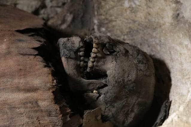 Egitto, ritrovate 50 mummie nel sito di Tuna El-Gebel