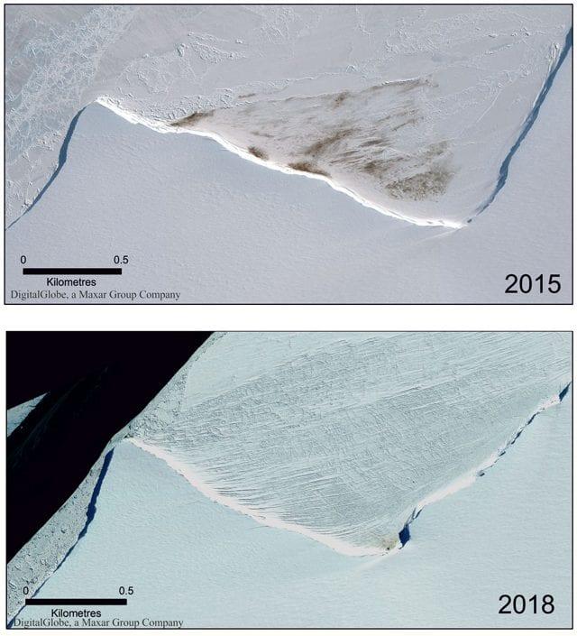 ghiacciai pinguini
