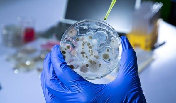 Allarme ONU - I microbi cominciano a diventare resistenti ai farmaci