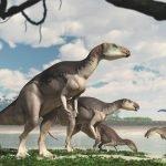 Scoperta nuova specie di dinosauro in Australia
