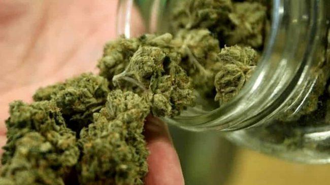 Storia e verità sulla cannabis, il perchè del proibizionismo