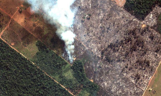 Cosa sta succedendo in Amazzonia? La spiegazione di The Guardian