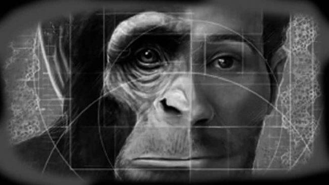 ibrido uomo-scimmia