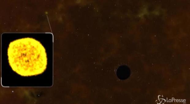 Le spettacolori riprese video di un buco nero che inghiotte una stella