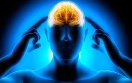 Aforismi, frasi e citazioni sulla mente e il cervello