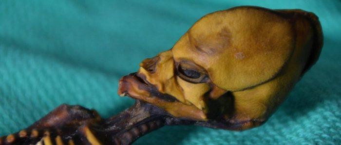 Il mistero dell'alieno di Atacama