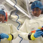 Le origini del laboratorio di livello 4 di Wuhan, un presagio annunciato