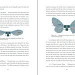 Progetti segreti degli Stati Uniti è il progetto Ornithopter