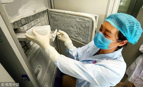 Le foto del Laboratorio di Wuhan che attestano le scarse condizioni di gestione