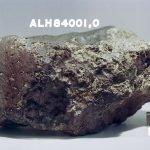Il meteorite ALK84001 marziano che presenta tracce di vita