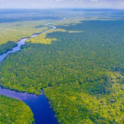 Amazzonia a rischio, vicina al punto di non ritorno