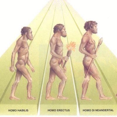 Scoperte tracce di DNA sconosciuto che riguardano i nostri antenati