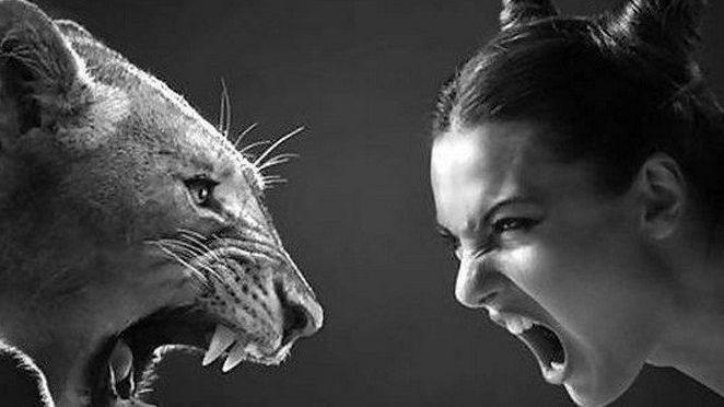 Aforismi, frasi e citazioni sulla rabbia
