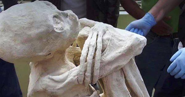 mummie di nazca
